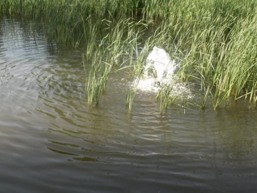 Wasser3
