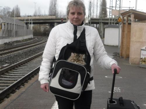 1 Weztlar Bahnsteig