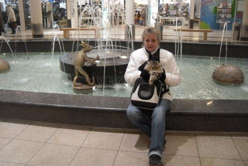 Babbels-Ich und der Froschkönig