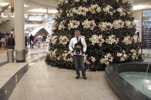 Vorm Weihnachtsbaum
