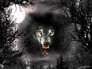 schwarzer-mond-wolf
